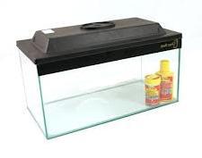 Glass goldfish aquarium with cover incorporating a light.