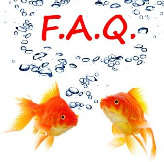 Frequently asked questions about Goldfish.