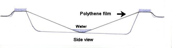 In-ground goldfish pond showing filling method for a polythene liner.