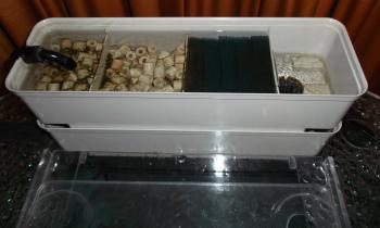 Under cover aquarium filter (twin tray).